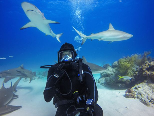 Jeb Corliss on a Shark Dive